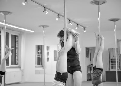 poledance assistance